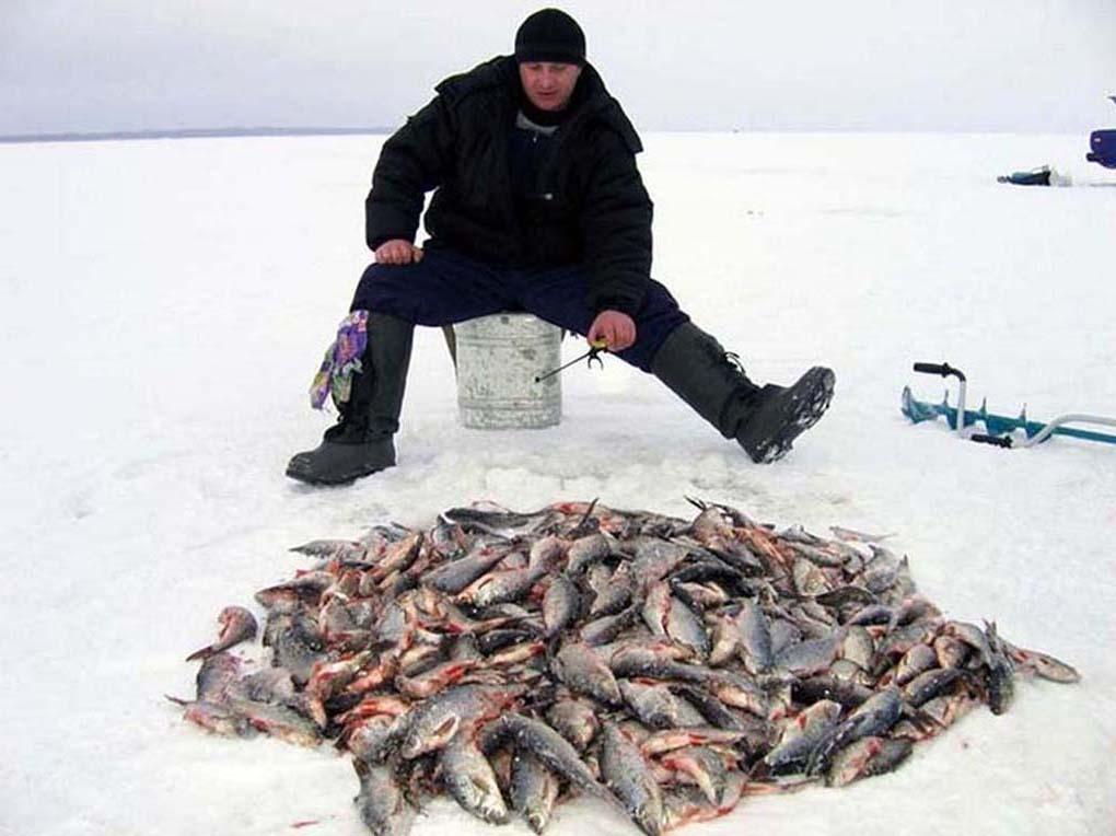 ракета для ловли рыбы